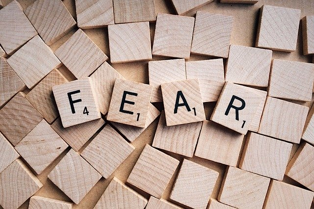 fear-54e0d44a43_640